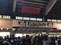 THE Collectors @初武道館行ってきました!! - ハンちゃん Goes On!!