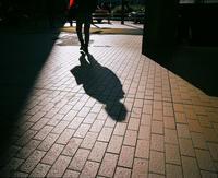 光と影 - BobのCamera