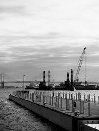 朝の桟橋 - 節操のない写真館