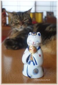 猫のお雛様 お内裏様 - 日々楽しく ♪mon bonheur