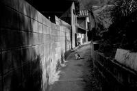 路地 - 爺の街角徘徊記録