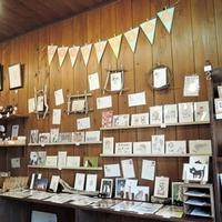 『春のポストカードまつり』 始まりました~ - 湘南藤沢 猫ものの店と小さなギャラリー  山猫屋