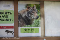 独りになったセロ(2016/9/17) - 今日ものんびり動物園