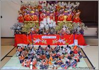 二川駒屋のひなまつり - 野鳥の素顔 <野鳥と・・・他、日々の出来事>