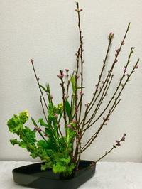 今日のお稽古花 ~桃のお節句~ - 花とaromaとうさぎとかのん