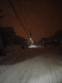 3月3日 今日の写真 - ainosatoブログ02