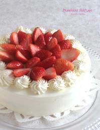 おひな祭りのお祝いに 〜 イチゴのショートケーキ - Tortelicious Cake Salon