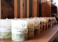 Botanical Candle ミモザ / YoakenoAkari - bambooforest blog