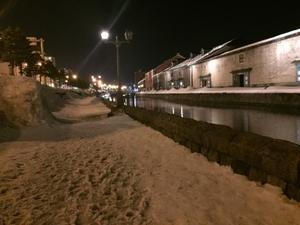 雪の小樽運河 - ソランのブログ
