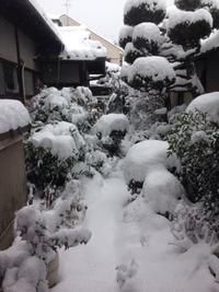 雪の桂離宮 - Hana House 4seasons