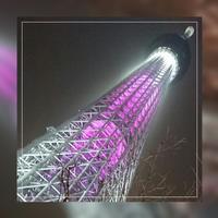 「桜色のスカイツリー」2017.3.2 - わたしの写真箱 ..:*:・'°☆