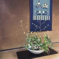 【6/4京都】実践型ワークショップ「kureharu Lab.」ホームで開催します。 - ココロとカラダは大事な相方 アーユルヴェーダ案内人・くれはるのブログ