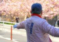 桜ラッピング自販機 - 写愛館