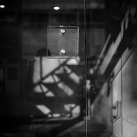 2017年3月9日 施錠されたエントランスを超えて侵入する光蜥蜴 - Silver Oblivion