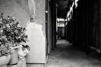 路地裏哀歌(ろじうらエレジー) - 町屋 Part.2 - - 夢幻泡影