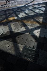 隣駅の光蜥蜴 - Soul Eyes