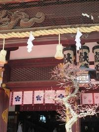 大阪天満宮の梅~♪ - a&kashの時間。