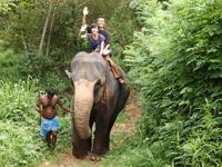 ゾウ乗りとアーユルヴェーダの体験 - Da bin ich! -わたしはここにいます-
