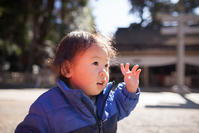 旅立つ人に勝利の神が微笑む古社 鹿島神宮 - Full of LIFE