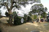 3.5 百手祭( ももてまつり ) - LGの散歩写真