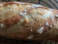 フ、フランスパン 焼きました 焼けました - パンと焼き菓子の記録