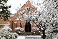同志社と相国寺の雪景色 - 花景色-K.W.C. PhotoBlog