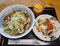 昼飯にいっぱい食べる - 柴犬たぬ吉のお部屋