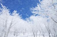 晴れ間の吹雪 - 自然と仲良くなれたらいいな2