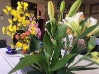 卒業式シーズンですね!市立女子高の卒業式から、山陰効果団地の直会へ。 - 松江に行こう。奈良 京都  松江。3つの国際文化観光都市  松江市議会議員 貴谷麻以きたにまい