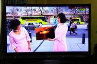 29年3月の富士 番外編 TV投稿の富士 - 富士への散歩道 ~撮影記~