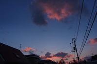 3月5日 今日の写真 - ainosatoブログ02