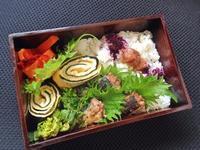 3/6 いわしの梅煮弁当 - ひとりぼっちランチ