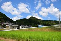 太平記を歩く。 その26 「平石城跡」 大阪府南河内郡河南町 - 坂の上のサインボード