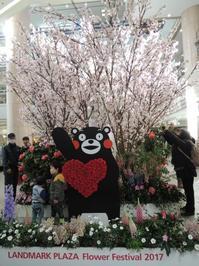 くまモンファン感謝祭2017 in YOKOHAMA - ★お気楽にょろちゃん★