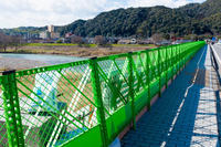 フェンス... - ◆Akira's Candid Photography