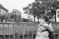 再開した動物園で。 - SunsetLine