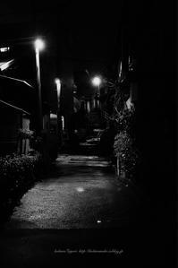 路地の奥 - koharu*biyori