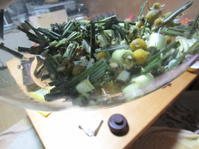 ハーブ茶 本物の花と花に似せた花 - 南阿蘇 手づくり農園 菜の風