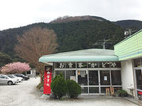 「孤独のグルメ」に出た、わさび丼@河津を食べに行ってみた。 - Isao Watanabeの'Spice of Life'.