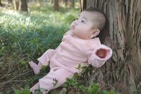 森の赤ちゃん - 家族の風景