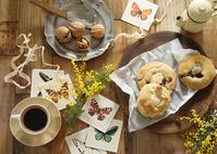 今日はミモザの日♪春の訪れに感謝のティータイム♪ - きれいの瞬間~写真で伝えるstory~
