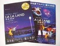 映画っていいな~ 『LaLa Land』(庄田) - 柚の森の仲間たち