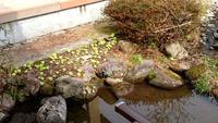油断しておりました - 金沢犀川温泉 川端の湯宿「滝亭」BLOG