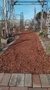 バラ園の小道がチップで素敵に変身 - Rose&Farm