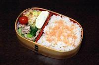 豚肉とチンゲン菜の炒め物 - 庶民のショボい弁当