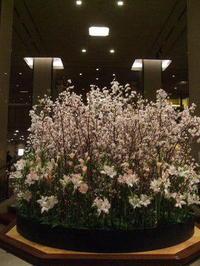 帝国ホテルのロビー装花と・・・ - K's Sweet Kitchen