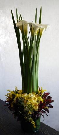 児童デイサービスのオープンのお祝いに。函館市花園町に発送。 - 札幌 花屋 meLL flowers