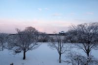 春の雪の黄昏に柄にもなく - Yoshi-A の写真の楽しみ