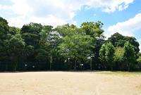 太平記を歩く。 その28 「陶器城跡」 大阪府南河内郡河南町 - 坂の上のサインボード