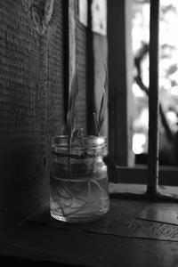 Raw現像 - Saigon Rambling Blog